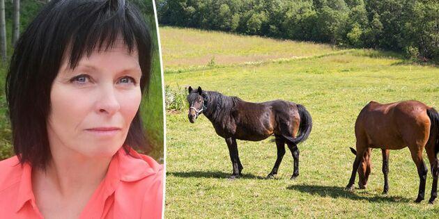 """""""Hästar riskerar bli ett nöje för de allra rikaste"""""""