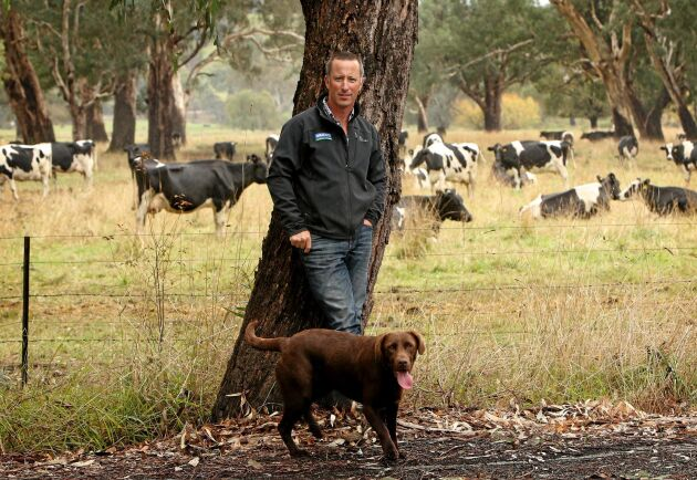 Mjölkbonden Stuart Crosthwaite på gården i Kiewa Valley, Victoria.