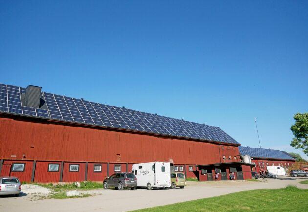 Hela gården förbrukar cirka 300000 kilowattimmar per år och solcellsanläggningen med 634 paneler ger ungefär hälften av det.