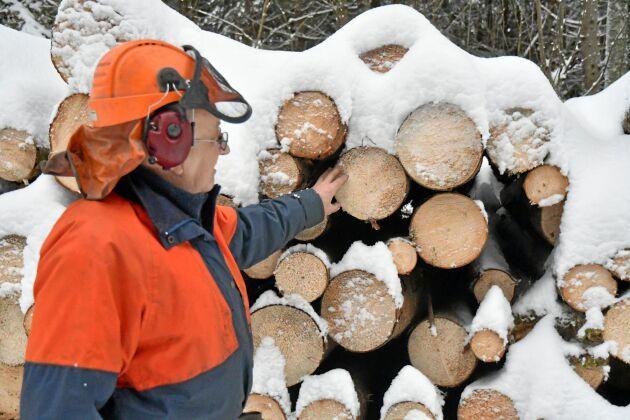 Sören Pettersson räknar med att plocka ut uppåt 300 m3fub barkborreskadat virke. Det säljer han som energived.