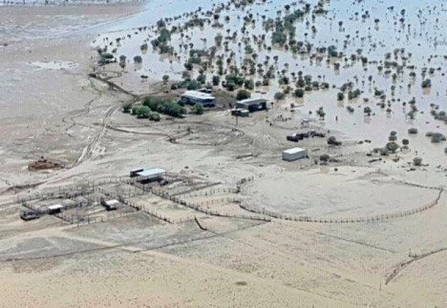 Julia Creek var ett av de värst drabbade områdena under monsunen, som slog till i slutet av januari och början av februari i norra Queensland.