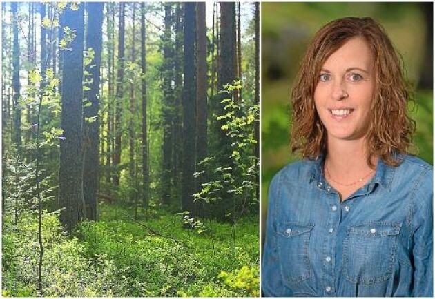 Mångfald i ålder, kön och ursprung borde vara styrka även bland skogsägare, skriver ATL:s krönikör Marie Wickberg.