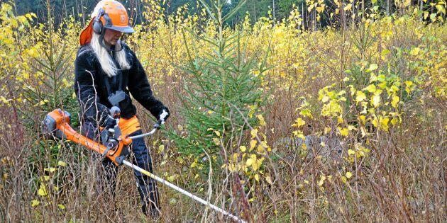 Skogsmässa röjer bland gamla stereotyper