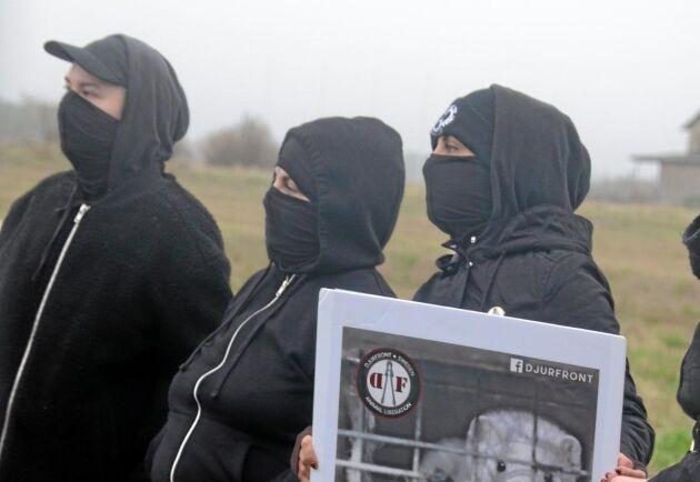 Aktivister demonstrerar i anslutning till minkfarmen i Glommen utanför Falkenberg.