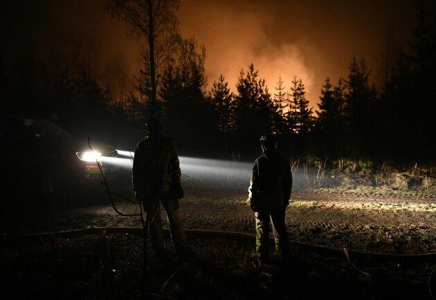 Arkivbild från skogsbrand vid Tidningshyttan nära Motala, 24 april 2019.