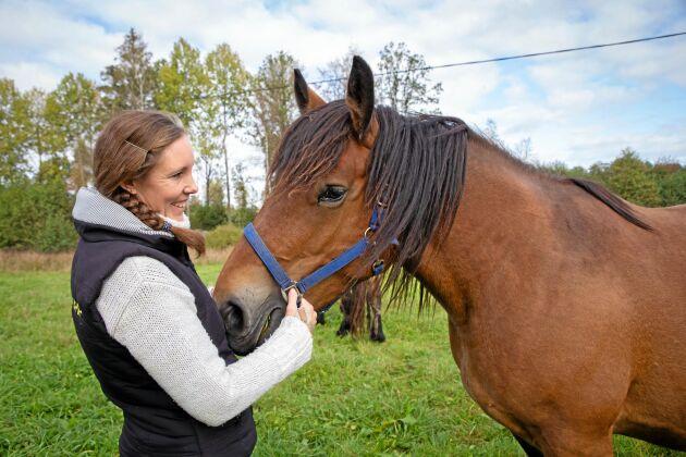 Ardennerhästen är en kraftfull häst som även passar bra till köttlådan. – I stället för att slumpas bort eller destrueras borde man ta tillvara en bra resurs, menar Sara Rosqvist.