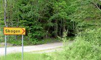 Norra vill visa vägen i skogen