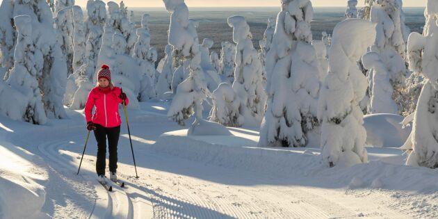 Längtar efter snö? Här kan du åka skidor!