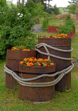 Ett fint stilleben med härliga konstraster. I roströren har Sivan och Uffe planterat tagetes.