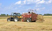 Miljardstöd till tyska bönder