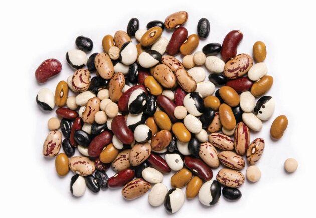 Vid sidan av klimat och miljö lyfts också hälsa, smak, bekvämlighet och ursprung fram som faktorer i ett proteinskifte.