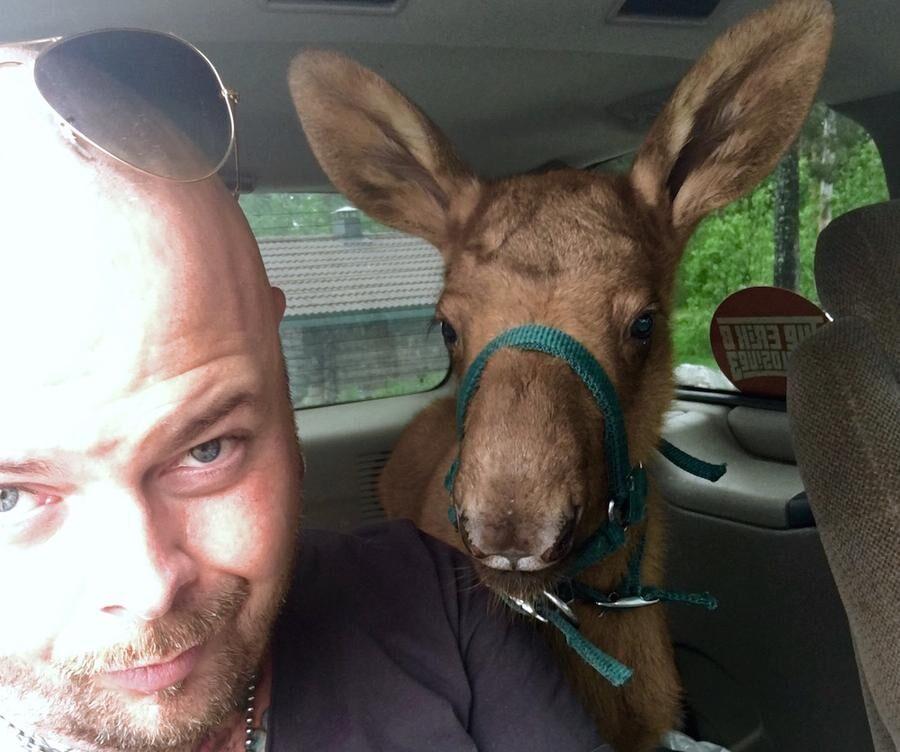 Oväntad passagerare. Med denna bild väckte Erik Brodén stort gensvar på Facebook.