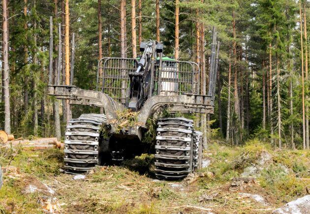 Den sjunkande kronkursen oroar skogsmaskinsförsäljarna även om de flesta i nuläget inte ser någon vikande försäljning.