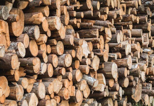 Fram till augusti 2022 kan skogsbolagen använda sig av matrisfub. Men sedan är det stopp.