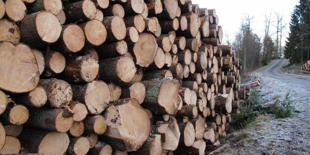 Ny dom: Skogsstyrelsen får publicera planerade avverkningar
