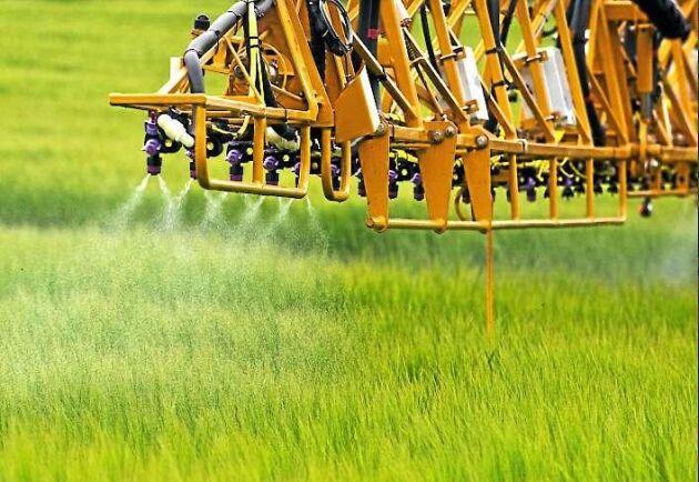 –Målsättningen i den svenska handlingsplanen är att minska risken och även minska användningen. Där följer vi inte riktigt ambitionerna och det är inget bra betyg. Det krävs fortsatta insatser, säger Peter Bergkvist, strategisk rådgivare kring växtskyddsmedel på Kemikalieinspektionen.