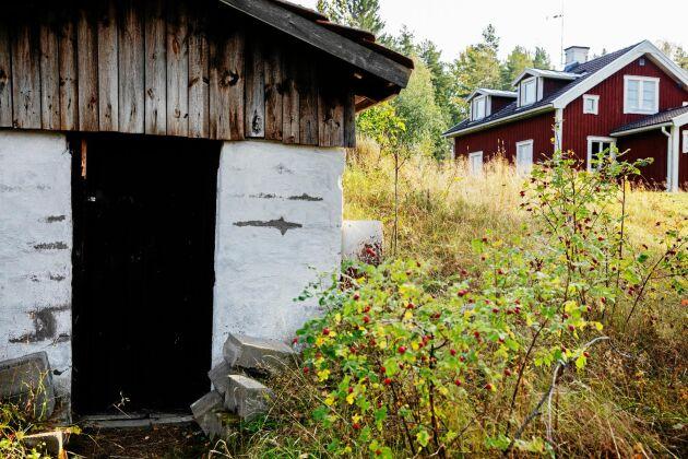 Den gamla jordkällaren byggdes av de första småbrukarna på gården och fungerar än i dag.