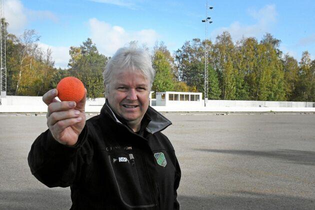 Ordföranden Lars-Johan Svanström tror att Frillesås BK ska fortsätta att klara sig kvar i bandyns elitserie.