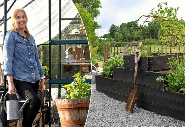 Med säker blick och känsla för inredning utomhus, har Cecilia skapat skönt, charmig stämning i sin trädgård, samtidigt som den kräver ett minimum av skötsel. Växthus, Vitavia.