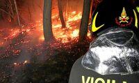 Orsakade skogsbrand – ska böta 280 miljoner