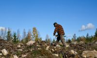 Nytt pris för Skogsvårdsentreprenörer
