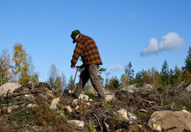 Med The Silvicultural Award vill Skogforsk tillsammans med Skogs-Elmia lyfta fram duktiga skogsvårdsentreprenörer.