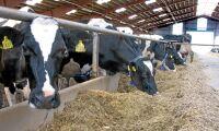 Fastighetsägare tar över konkursad mjölkgård