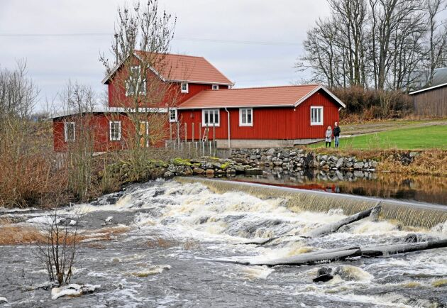 Kvarnmiljö. Skogsbokvarn i Lidan vid Tråvad i Västergötland.