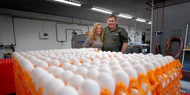 Samlad kraft gör spjutspetskandidaten Grimstad Lantbruk framgångsrikt