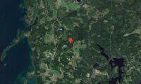 Skogsfastighet i Östergötland har bytt ägare