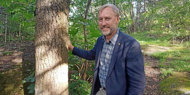 Han ska leda LRF Skogsägarna