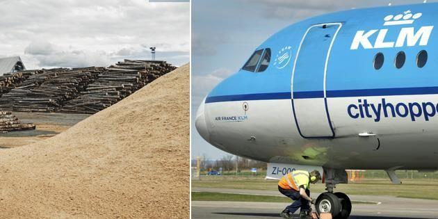Planerna på svenskt flygbränsle av skog kommer närmare