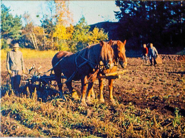 Christinas farfar som var småbrukare på gården tidigare är hennes förebild.