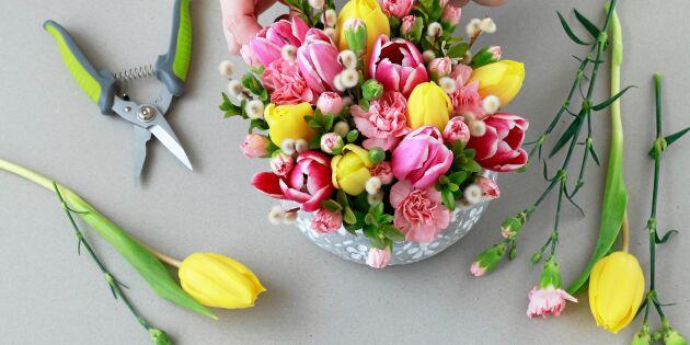 8 knep för vackra tulpanbuketter