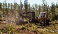 Skogsentreprenörer bjuder Bucht till samråd om jobb