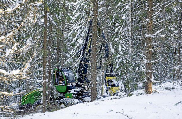 Fjolåret gav det bästa rörelseresultat någonsin för Mellanskog, uppger föreningen.