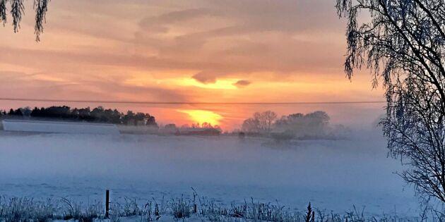Kylig solnedgång i Roslagen