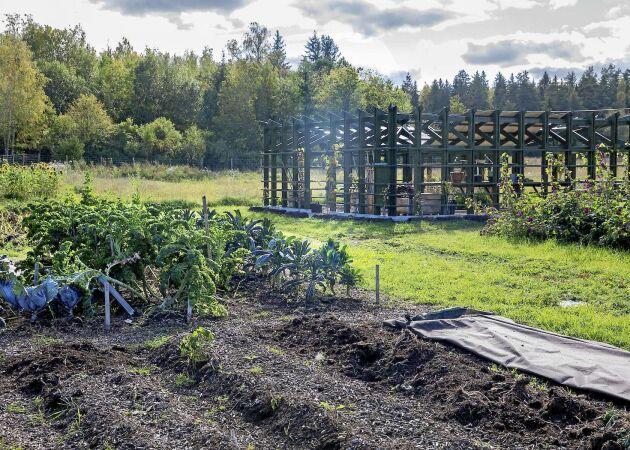No dig garden – så odlar du utan ett enda spadtag!