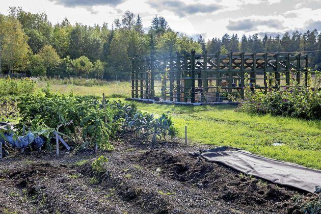 Runt den centrerade pergolan på Osprey Farm & Studio ligger en hektar mark som så småningom ska bli helt uppodlad.