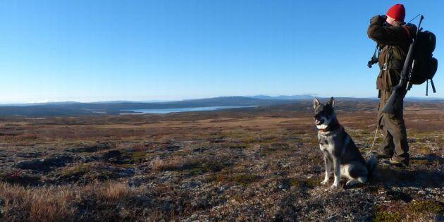 Covid-19 satte stopp för de norska jaktkunderna