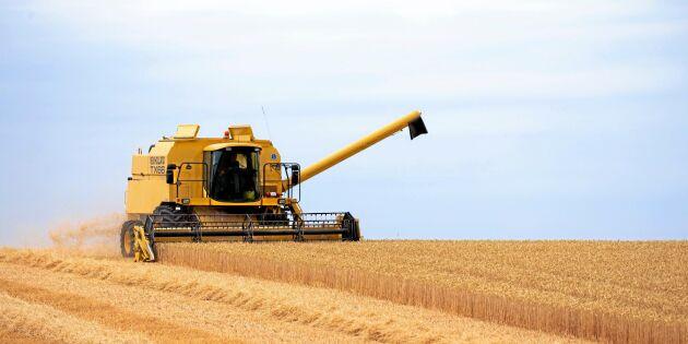Splittrad bild av lantbrukets lönsamhet