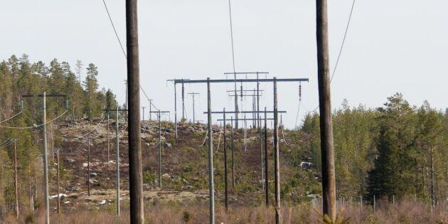 Slår larm om avarterna inom elhandeln