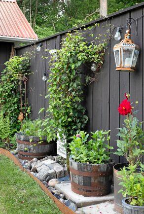 Klätterväxter sköter sig i stort sett själva. Med jordytorna täckta av sten och en samling av krukor, blir rabatten ogräsfri och lättskött, men ändå fylligt dekorativ.