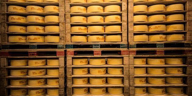 Ostar på lagring på Kalmar mejeri, som tillverkar Herrgård, Grevé och prästost.