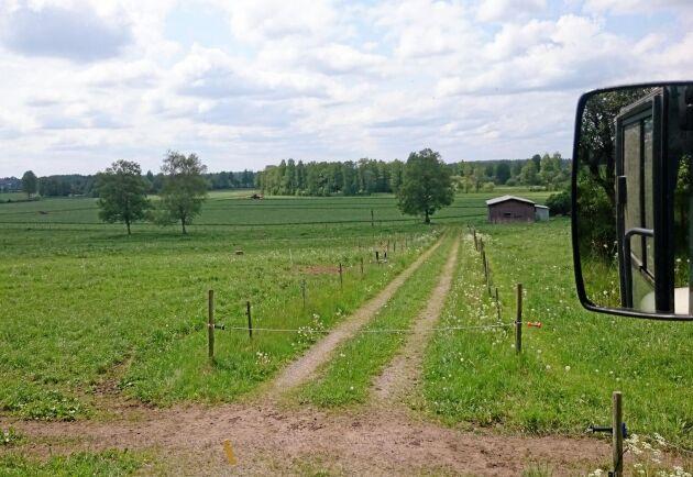 Så här ser det ut på gården ett vanligt år...