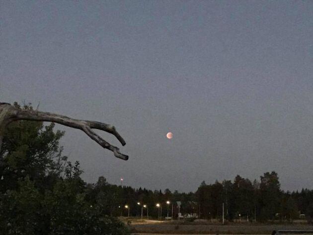 Camilla Wengelin njöt av månen i Stråtjära i Hälsingland.