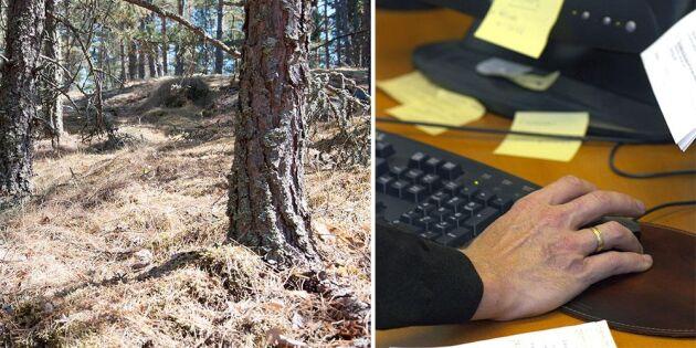 Försäkringar räddar skogsägaren från skadekostnader