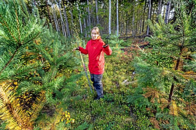 Monika Strömgren är docent i skoglig ekosystemekologi vid SLU. Hon har undersökt hur markberedning påverkar koldioxidavgången som finns bundet i jorden.