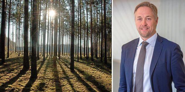 SCA vill köpa skog i Lettland