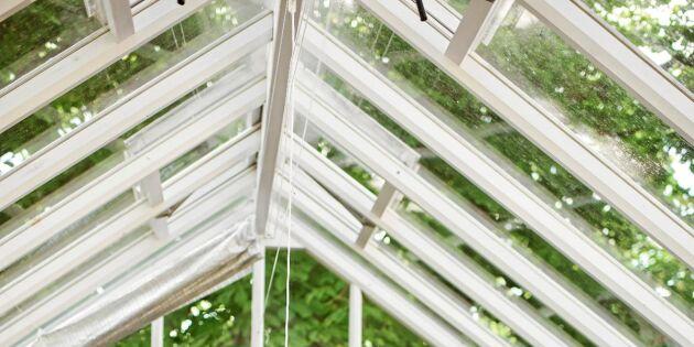 Växthusdags – 5 smarta tips för att bygga eller köpa